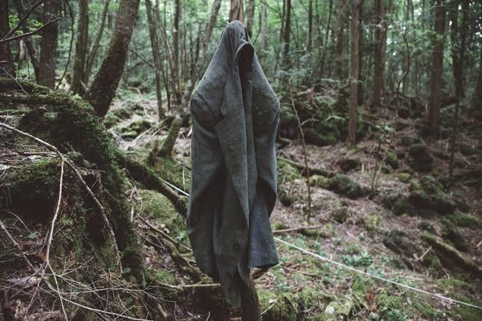 3.आकीगहारा वन (जापान)